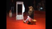 Впервые в Жлобине!!!Легендарный цирк Юрия Никулина!!!