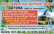 Доставка на черное море Затока,  Одесса,  Ильичевск